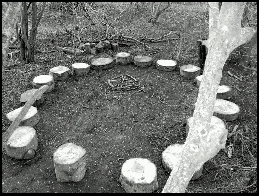 forest school2